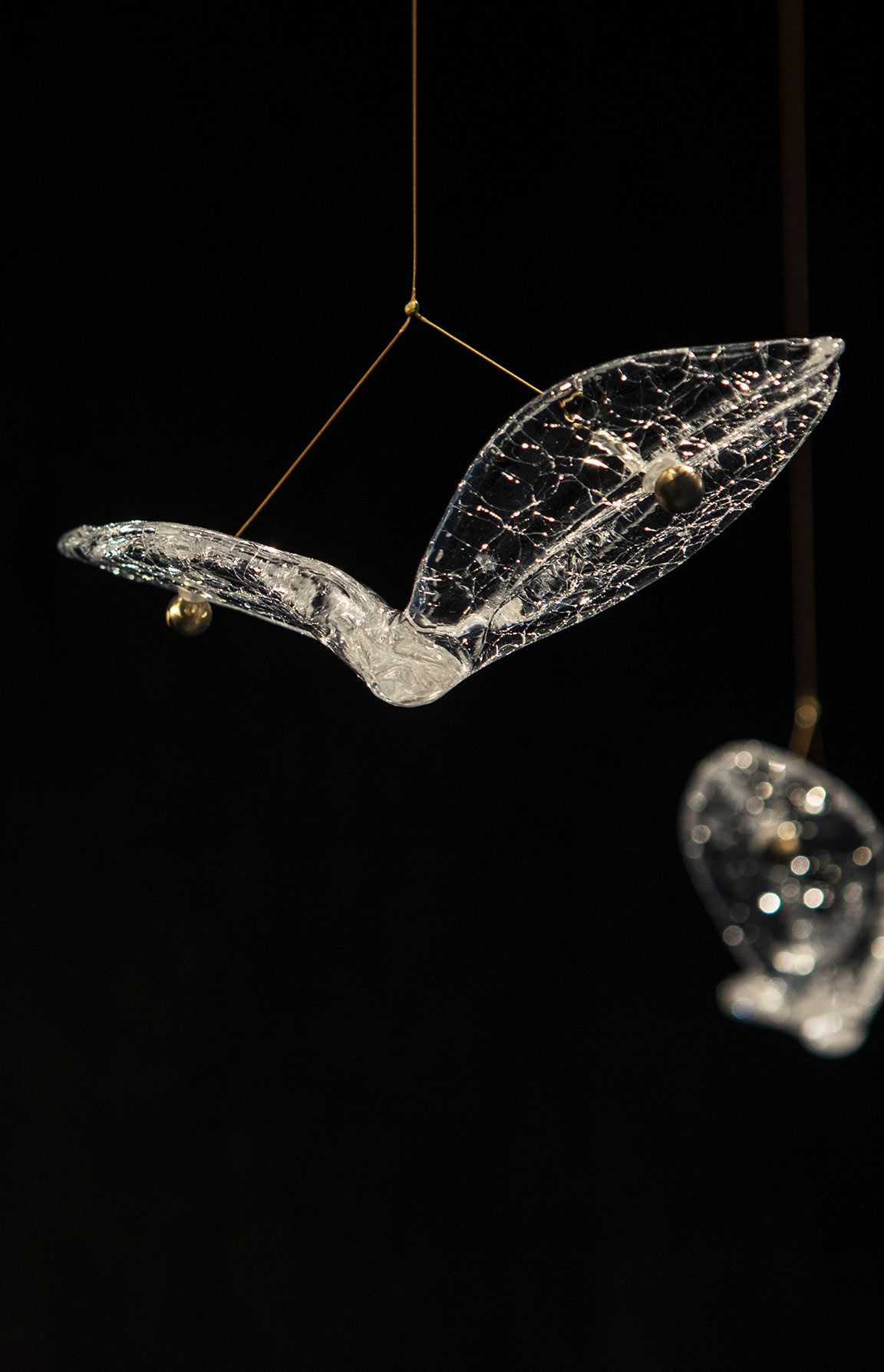 Delicate Glistening Crackled Glass Birds Flying Suspended Gold Cable Custom-made Installation London Luxury Lighting Nulty Bespoke